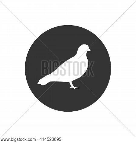 Vector Pigeon Silhouette White Icon On White