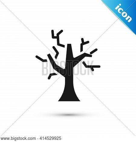 Grey Withered Tree Icon Isolated On White Background. Bare Tree. Dead Tree Silhouette. Vector