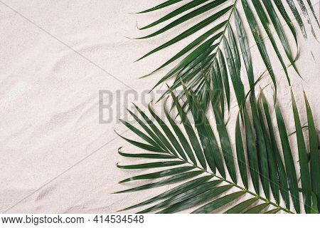 Top View Of Green Tropical Leaves On Sand Background. Flat Lay. Minimal Summer Concept With Palm Tre