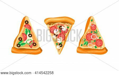 Slices Of Appetizing Pizza With Tomato, Potherb And Mushrooms Above View Vector Set