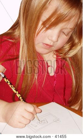Young Student Doing Her Homework