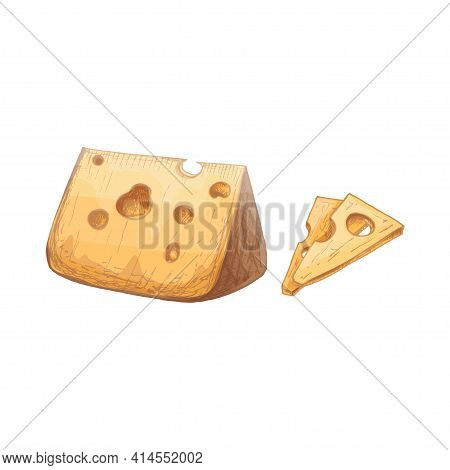 Pieces And Head Of Cheese. Vector Vintage Hatching Color Illustration. Isolated On White Background.