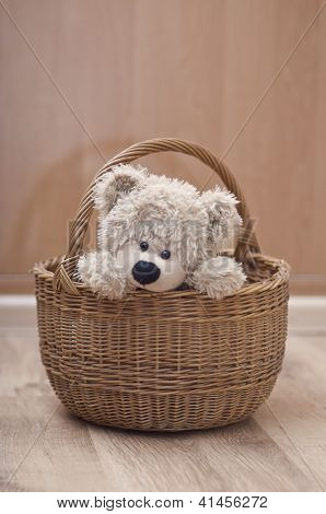 Toy Bear Sitting In Basket