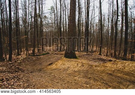 Newly Built Downhill Track In The Forest With Jumps And Narrow Curves. High Quality Photo