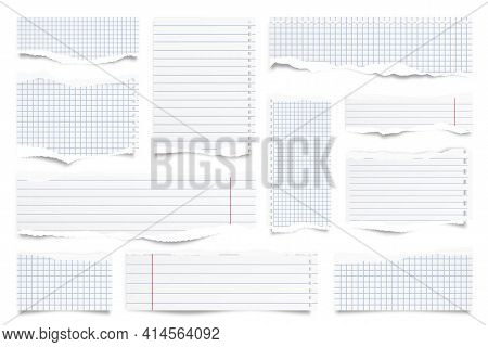 Ripped Paper Strips Isolated On White Background. Realistic Lined Paper Scraps With Torn Edges. Stic