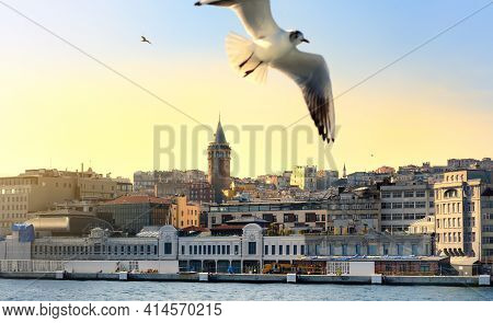 Aerial View Of Beyoglu District With Old Houses And Galata Tower On Top In Istanbul, Turkey. Bay Gol
