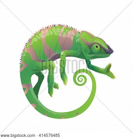 Chameleon Vector Icon, Cartoon Lizard With Green Skin And Stripes, Long Curvy Tail And Telescopic Ey
