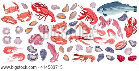 Seafood Big Set. Sea Creatures Shrimps, Lobsters, Salmon, Mussels, Crabs, Scallops, Oysters And Baby