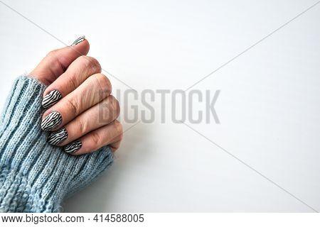 Hand In Sweater With Zebra Animal Printed Nails. Female Manicure. Glamorous Beautiful Manicure. Mani