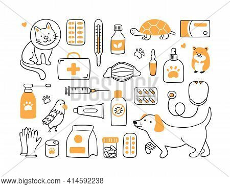 Veterinary Set With Pets, Medicines And Food. A Cat In A Collar And A Dog With A Bandaged Paw. Vecto
