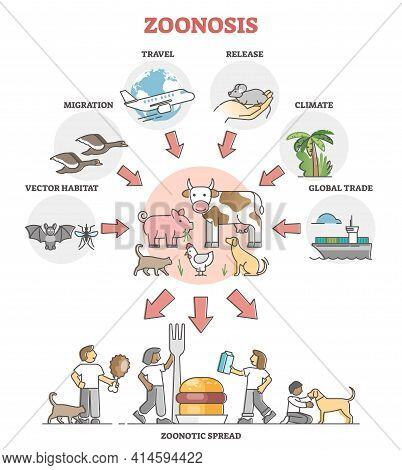 Zoonosis Infectious Disease Transfer From Animal To Human Outline Diagram