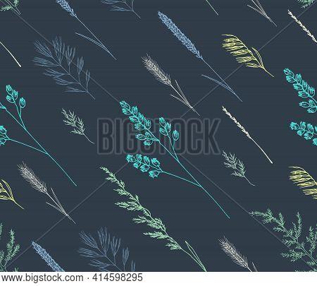 Sketch Contour Seamless Pattern. Field Wild Herbs. Spikelets On A Dark Background.