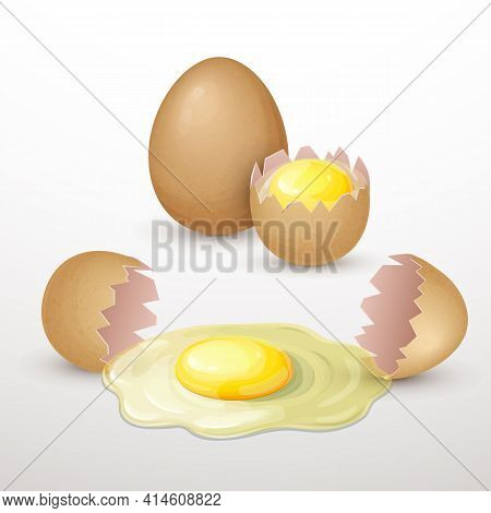 Brown Chicken Eggs Composition Isolated On White. Fresh Whole And Broken Egg With Raw Yolk And Prote