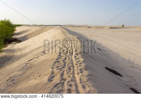 Sandy Dune With Footprints And Wheel Tracks Partly Sprinkled With Windblown Sand On Sandy Plain Agai