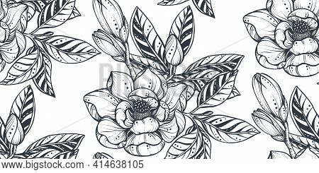 Black And White Vector Floral Seamless Pattern Of Magnolia Flowers And Branches.