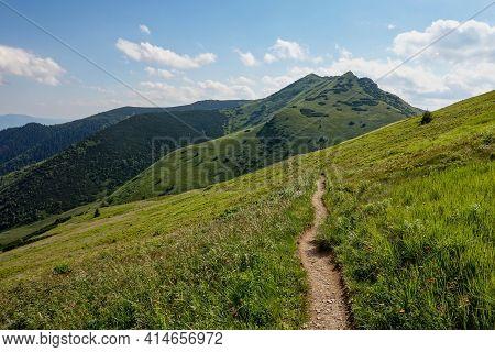 The Tourist Hiking Path In Mala Fatra Mountains In Slovakia, Eu Near Krivan Hills
