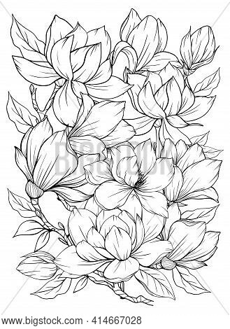 Coloring Page With Magnolia And Leaves. Vector Page For Coloring. Flower Colouring Page. Outline Mag