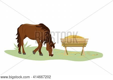The Horse Eats Hay From The Trough On The Farm. Country Pet. Isolated Character On A White Backgroun