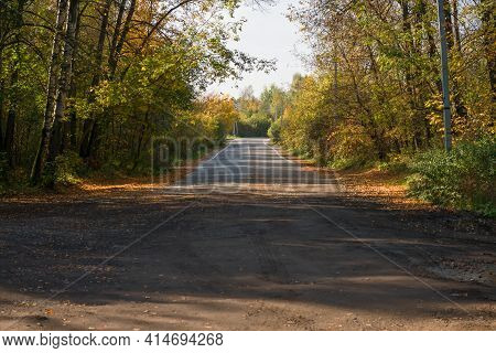 The End Of The Asphalt Roadway In The Forest