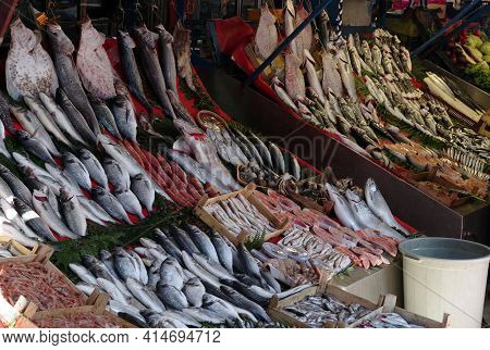 Street Shop Selling Fish And Seafood. Flounder, Mackerel, Salmon, Shrimp And Other Seafood On Displa