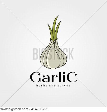 Garlic And Shoot Logo Vector Symbol Illustration Design, Garlic Spices Icon Symbol Design