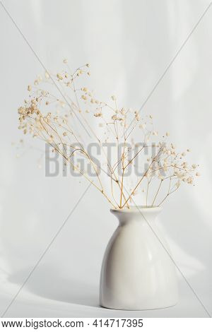 Bouquet Of Dry Gypsophila Flowers In A White Vase On Light Background