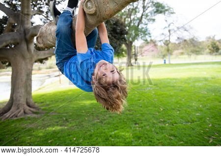 Kid Playing And Climbing A Tree And Hanging Upside Down. Teen Boy Playing In A Park