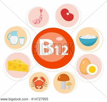 Infographic Set Of Vitamin B12. Healthy Lifestyle And Diet Vector Concept. Vector Illustration.