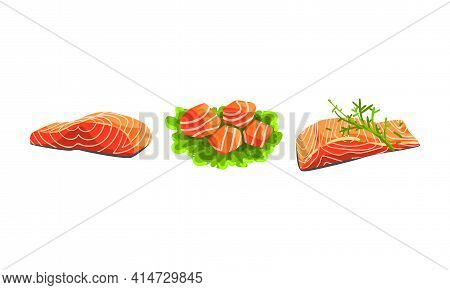 Fresh Salmon Fish Fillet And Slabs On Green Lettuce Lesf As Seafood Product Vector Set
