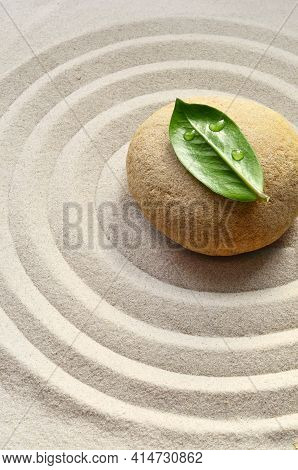 Sand, Circles And Stone. Green Leaf. Spa Concept.