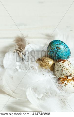 Easter, Spring Content. Gilded And Painted Quail Eggs In White Bird Feathers. On A Gray Wooden Backg
