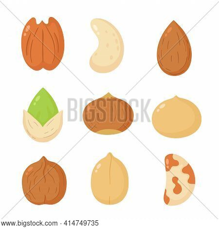 Nuts Mix Set Collection. Vector Flat Cartoon Illustration Icon Design. Isolated On White Background.