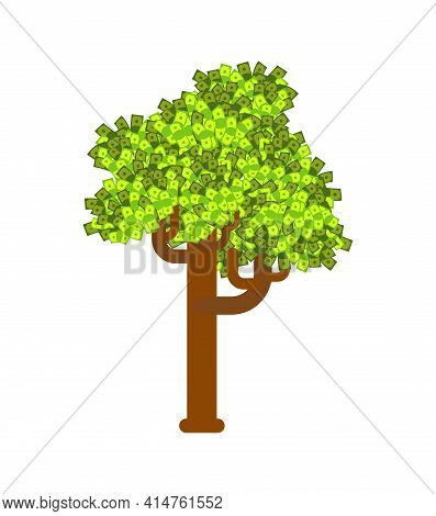 Money Tree. Cash Grows On A Tree. The Concept Of Attracting Money. Growing Profits. Growth Of The Co