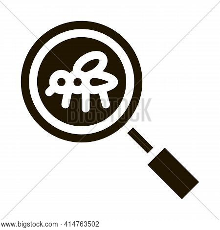 Mosquito Search Glyph Icon Vector. Mosquito Search Sign. Isolated Symbol Illustration