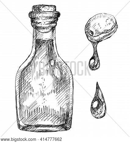 Bottle Of Olive Oil, Berry And Drop, Hand-drawn Illustration