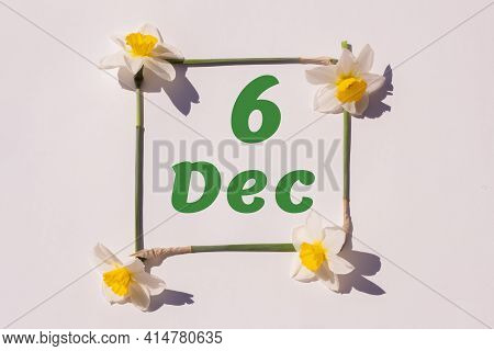 December 6th. Day Of 6 Month, Calendar Date. Frame From Flowers Of A Narcissus On A Light Background