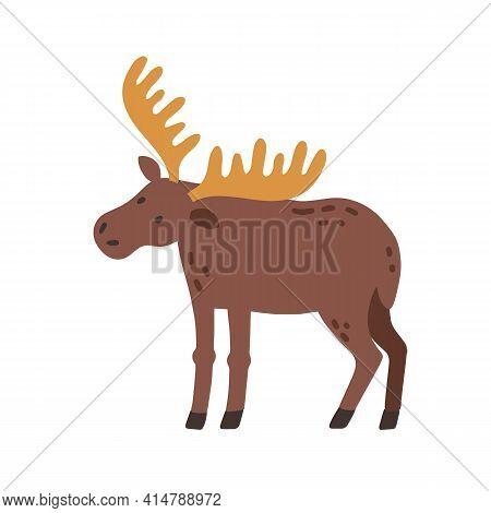Canadian Elk With Horns. Scandinavian Horny Moose. Nordic Wild Animal. Colored Flat Vector Illustrat