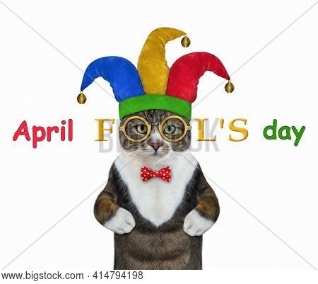 A Colored Cat Clown Wears A Jester Hat, A Red Bow Tie And Glasses. April Fool's Day. White Backgroun