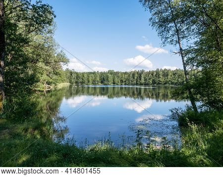 A Natural Body Of Water. Forest Pond In A Wild Place. Clean Natural Rivers And Lakes.