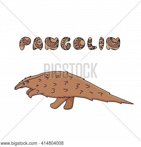 Brown Pangolin Or Scaly Anteater With Name Text. Vector Outline Doodle Cartoon Single African Or Asi