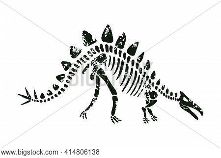 Vector Stegosaurus Dinosaur Skeleton In Black Color.