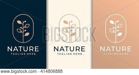 Hand Drawn Luxury Feminine And Modern Tree Template Logo Set. Logo Can Be Used For Icon, Brand, Iden