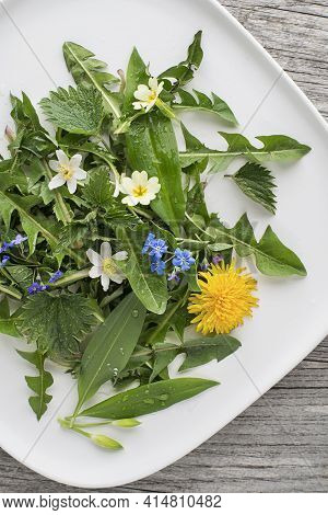 Healthy Spring Plants For Food Ingredients. Dandelion, Wild Garlic, Flowers And Nettle Background