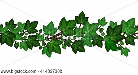 Ivy Leaves Branch.summer Green Border Seamless For Decoration. Summer Climbing Garden Liana Isolated