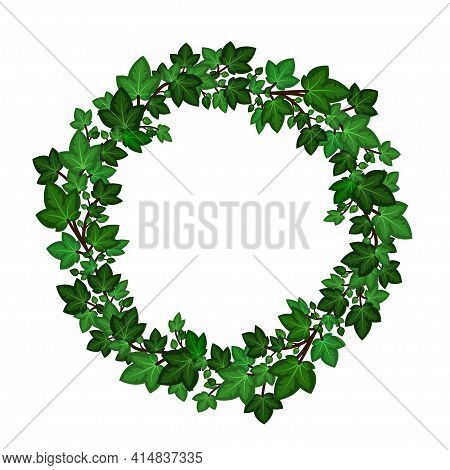 Ivy Leaves Wreath. Circular Green Ivy Garland Isolated On White Background. Decorative Frme Border.