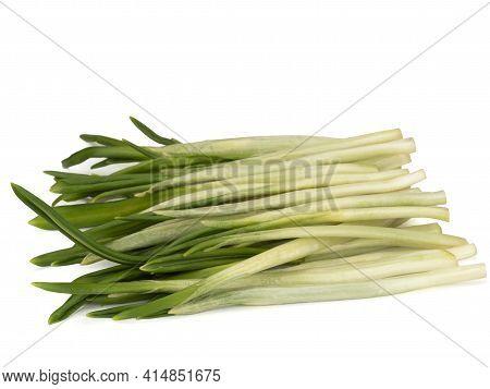 Allium Ursinum, Known As Wild Garlic, Ramsons, Buckrams, Broad-leaved Garlic, Wood Garlic, Bear Leek