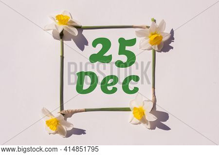 December 25th. Day Of 25 Month, Calendar Date. Frame From Flowers Of A Narcissus On A Light Backgrou