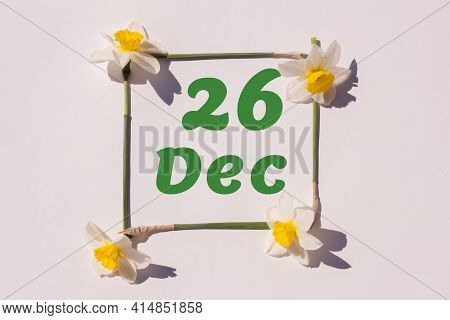 December 26th. Day Of 26 Month, Calendar Date. Frame From Flowers Of A Narcissus On A Light Backgrou