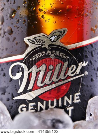 Bottle Of Miller Genuine Draft Beer