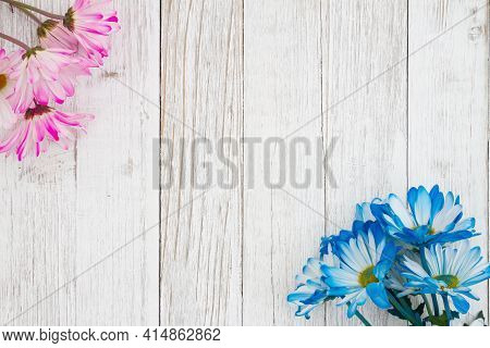 Blank Blue And Pink Daisies Bunch Of Flowers On A Weathered Whitewashed Wood Background With Copy Sp
